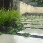 Landscape Design Benefits